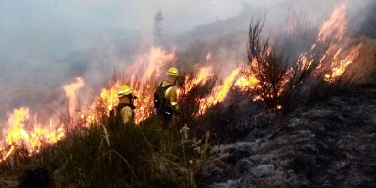 ¡El cerro Ilaló en llamas! Bomberos combaten el incendio