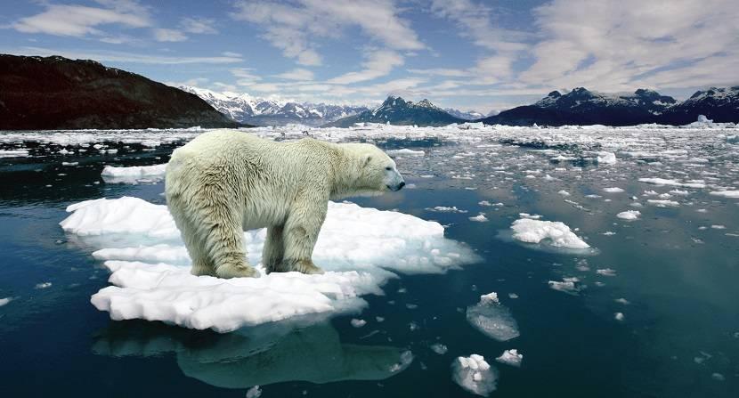 Deshielo Artico