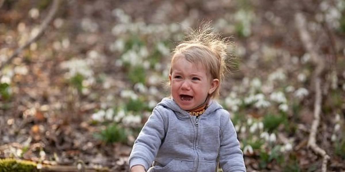 ¿Los niños le temen al cambio climático? Al parecer si y hay un método para conectarlos con la naturaleza