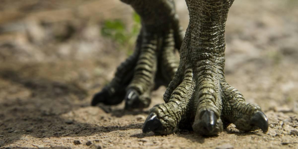 Dinosaurios: estos son los siete animales prehistóricos más extraños que existieron