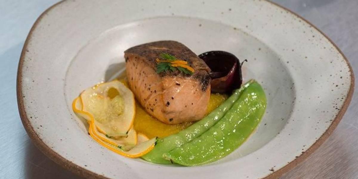 6 receitas de salmão dignas de MasterChef para você não fazer feio na cozinha