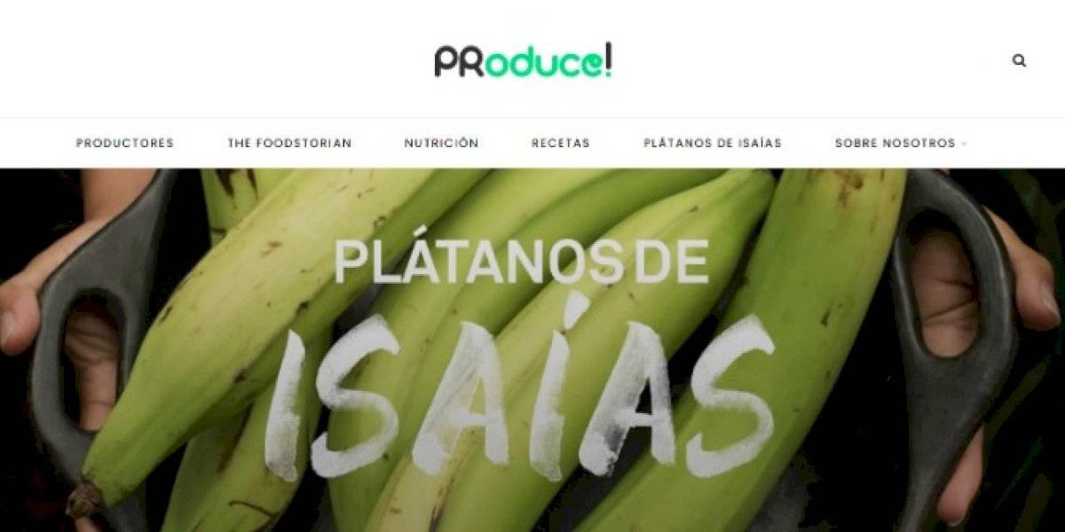 Presentan iniciativa para salvar los 'Plátanos de Isaías'