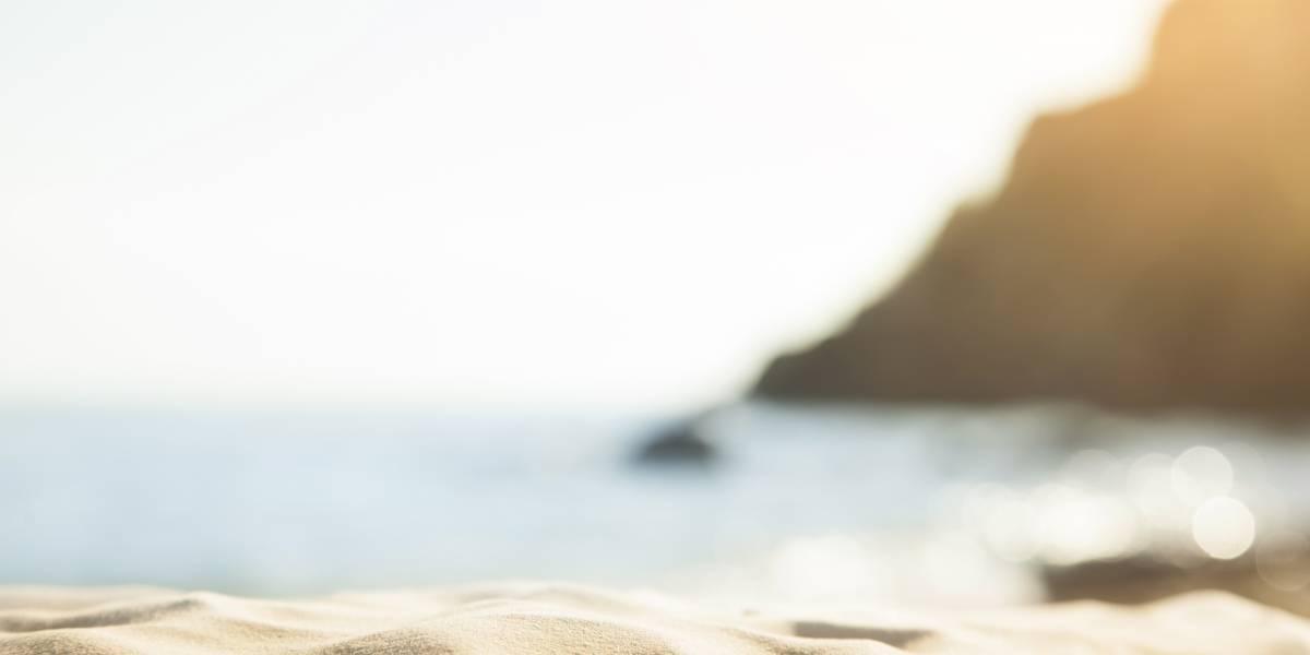 Praias são interditadas por autoridades locais após presença de 'Medusa Velella'
