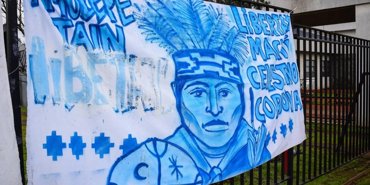 Tensión en La Araucanía: Alto Comisionado de la ONU para los DD.HH. culminó visita técnica