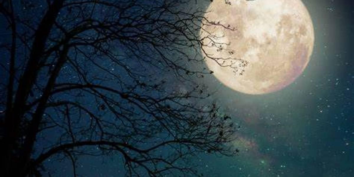 Esta extraña Luna se podrá ver durante Halloween y eso da un poco de miedo