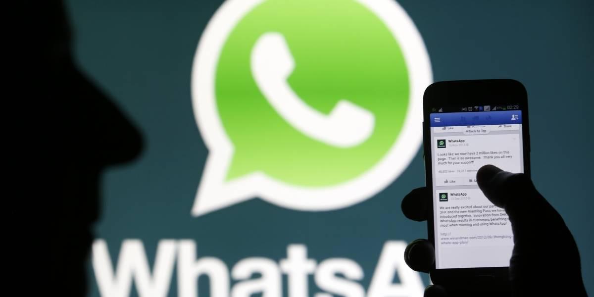 Atualização beta do WhatsApp para Android conta com 4 novas funcionalidades