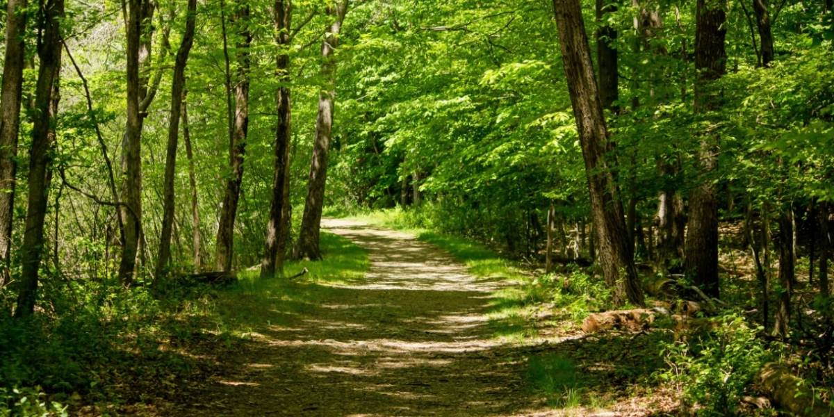 UTPL conforma la Red Nacional de Conocimiento de Productos Forestales no Maderables