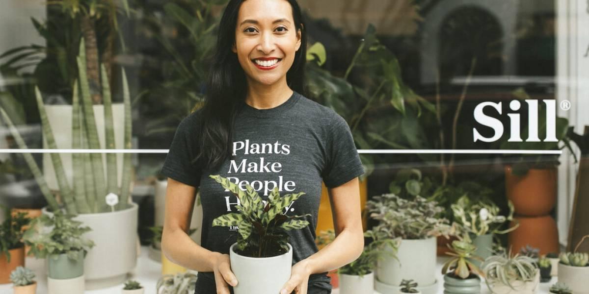 Crece venta de plantas para interiores durante la pandemia en EEUU