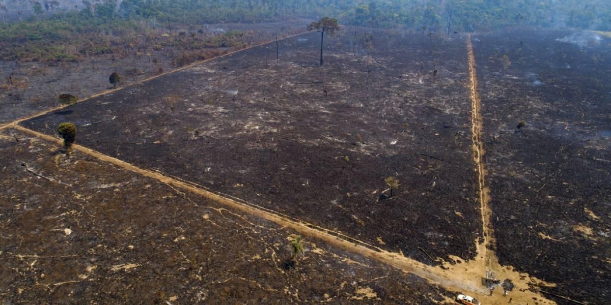 Brasil: Siguen incendios en Amazonia en 2020 pese a promesas