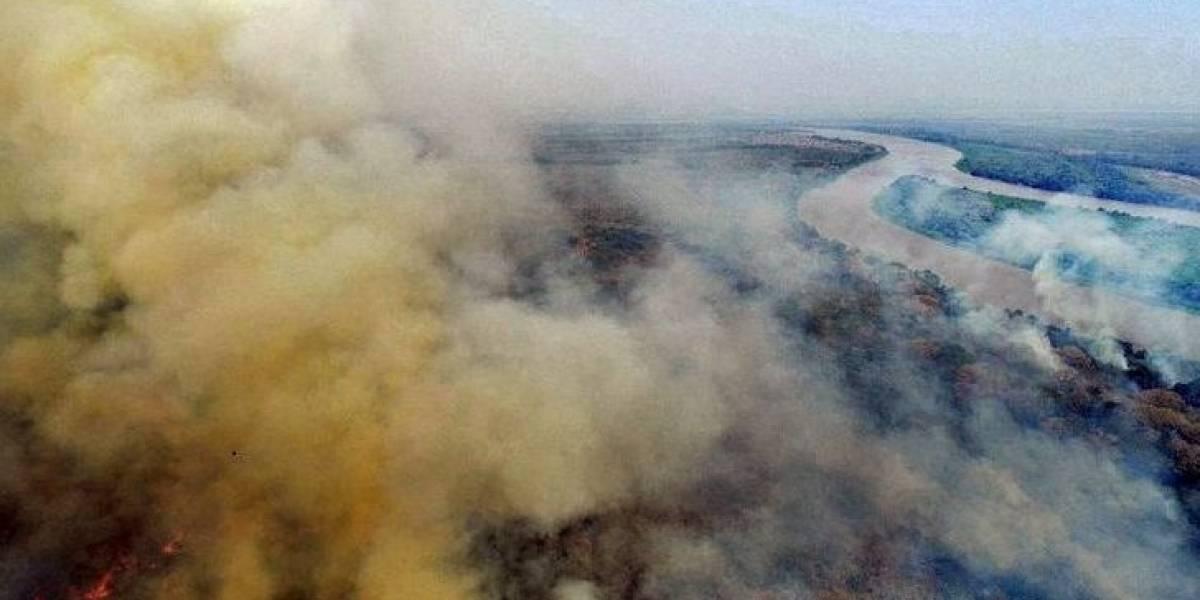 Bombeiros desistem de apagar fogo no Pantanal e contam com chuva