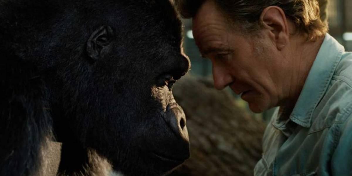 Reseña: The One & Only Ivan; conmovedora propuesta sobre la libertad a través de los ojos de un gorila