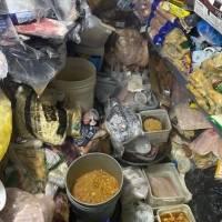 FOTOS: Cocinas sucias, comida expirada y todo lo que encontró Salud en restaurantes de Condado