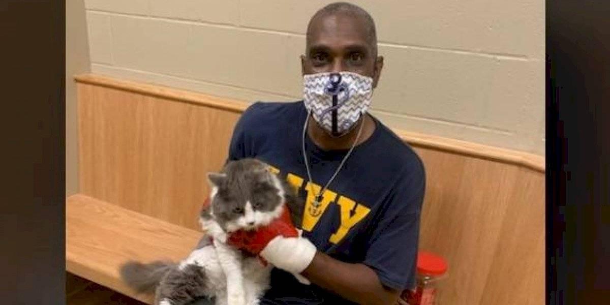 Hombre va a refugio a adoptar una mascota tras perder a su gato y se reencuentra con su compañero felino