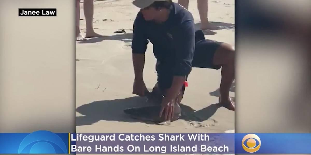 Vídeo mostra homem capturando tubarão com as mãos em praia nos Estados Unidos