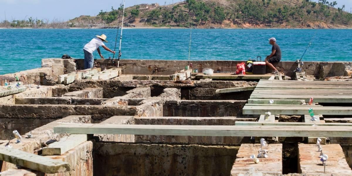 Pescadores se acercan a su tercer año sin recibir fondos por pérdidas tras el huracán María