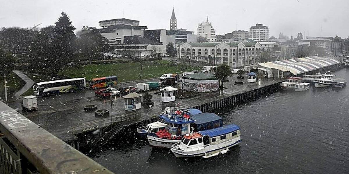 Nieve sorprende a los habitantes de Valdivia: usuarios comparten imágenes y videos en redes sociales