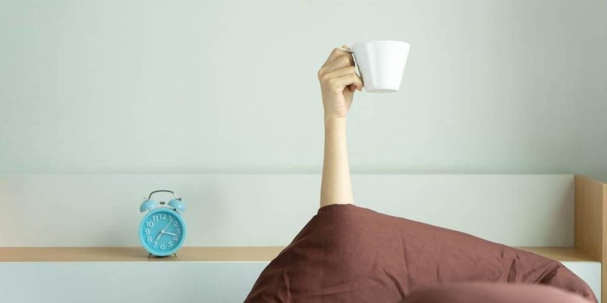 La pareja perfecta: científicos descubren que un café y una siesta es lo mejor para mantenerse despierto