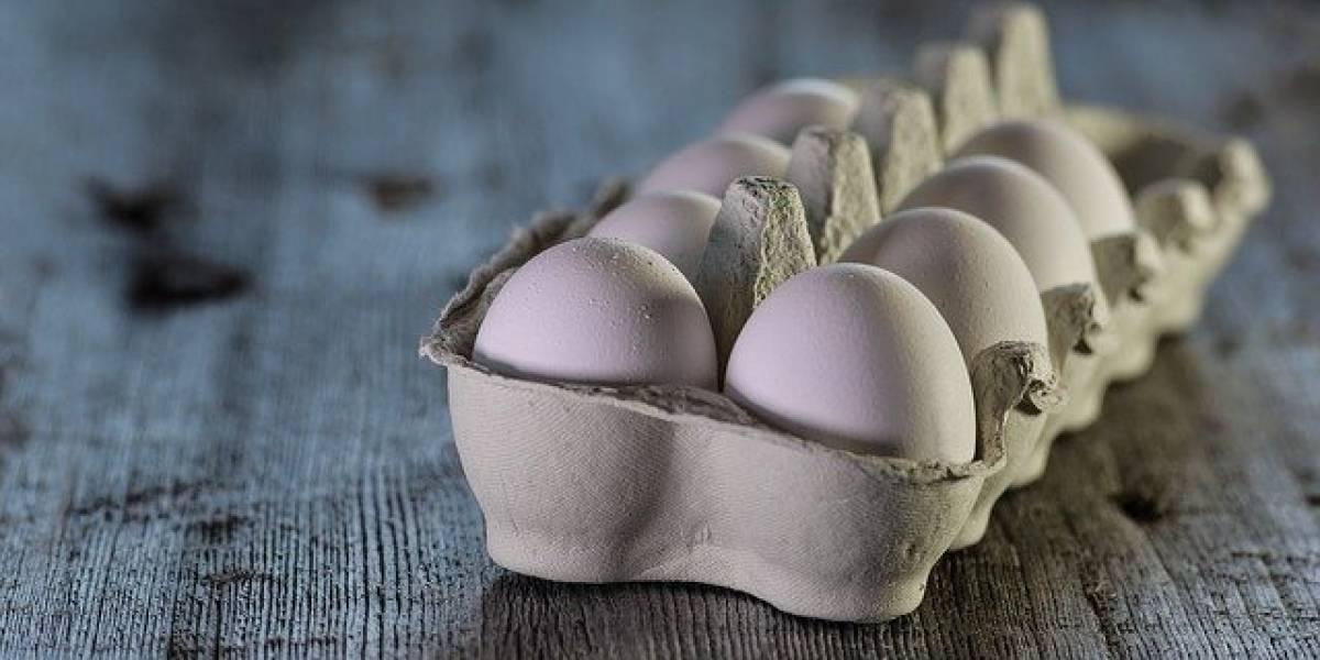 As dicas para cozinhar ovos de diferentes maneiras no micro-ondas