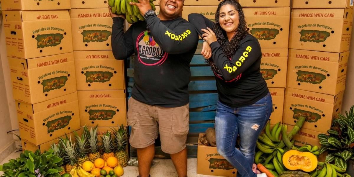 Jóvenes emprenden su negocio de cajas con frutas y verduras