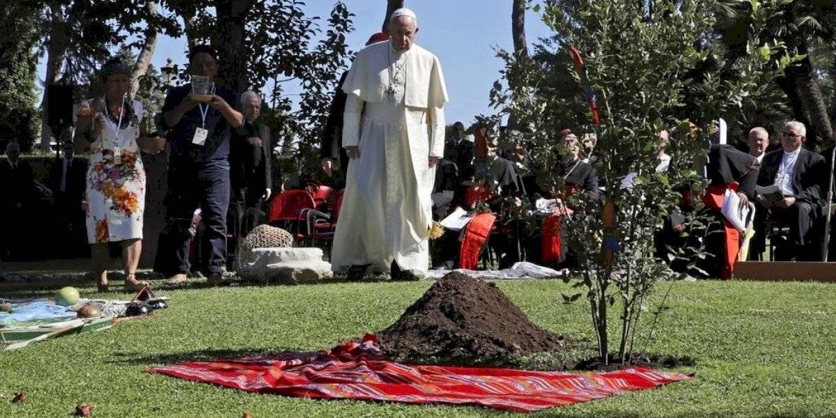 Francisco: Usen la pandemia para dar un descanso a la Tierra