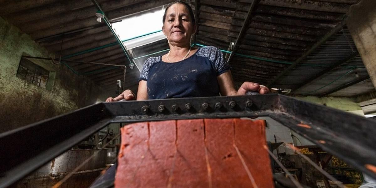Con un festival, buscan salvar la producción del bocadillo veleño