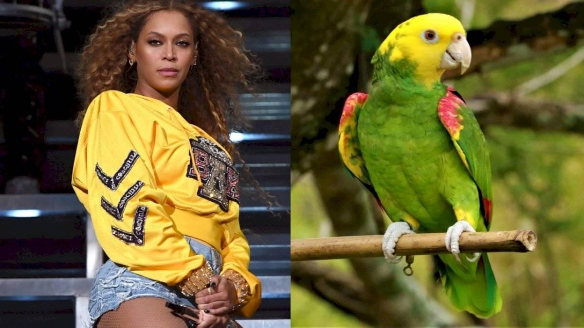 """Chico interpreta a la perfección el tema """"If I Were A Boy"""" de Beyoncé"""