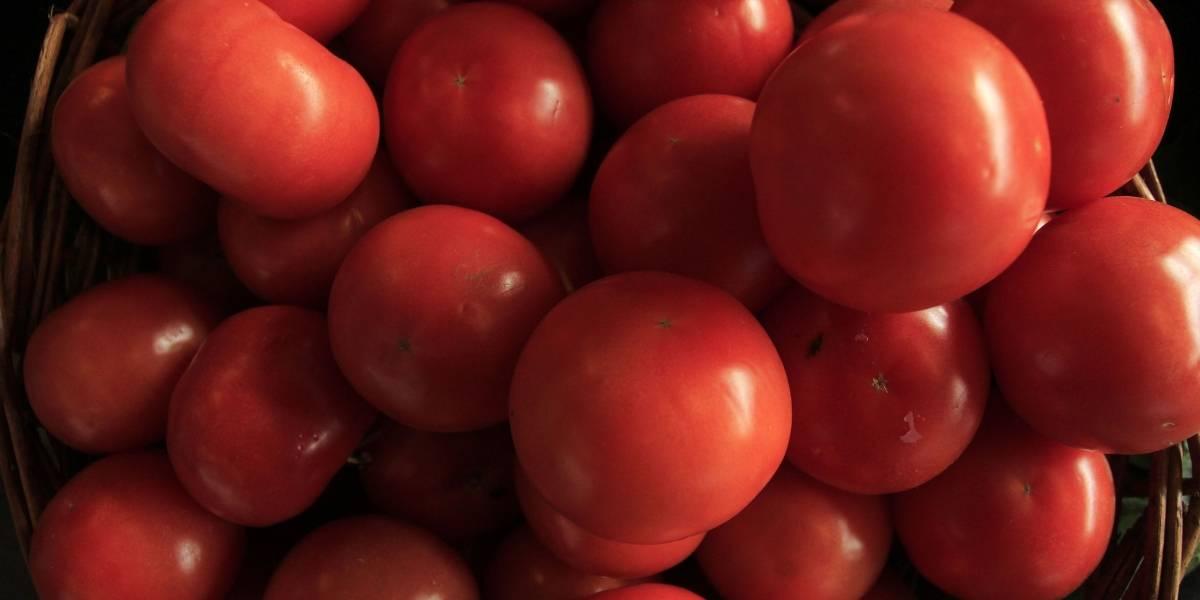 Tomates y pollo responsables de alzas: IPC de agosto llegó a 0,1%