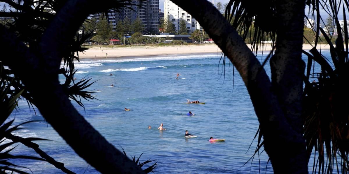 Muere surfer por ataque de tiburón en Australia