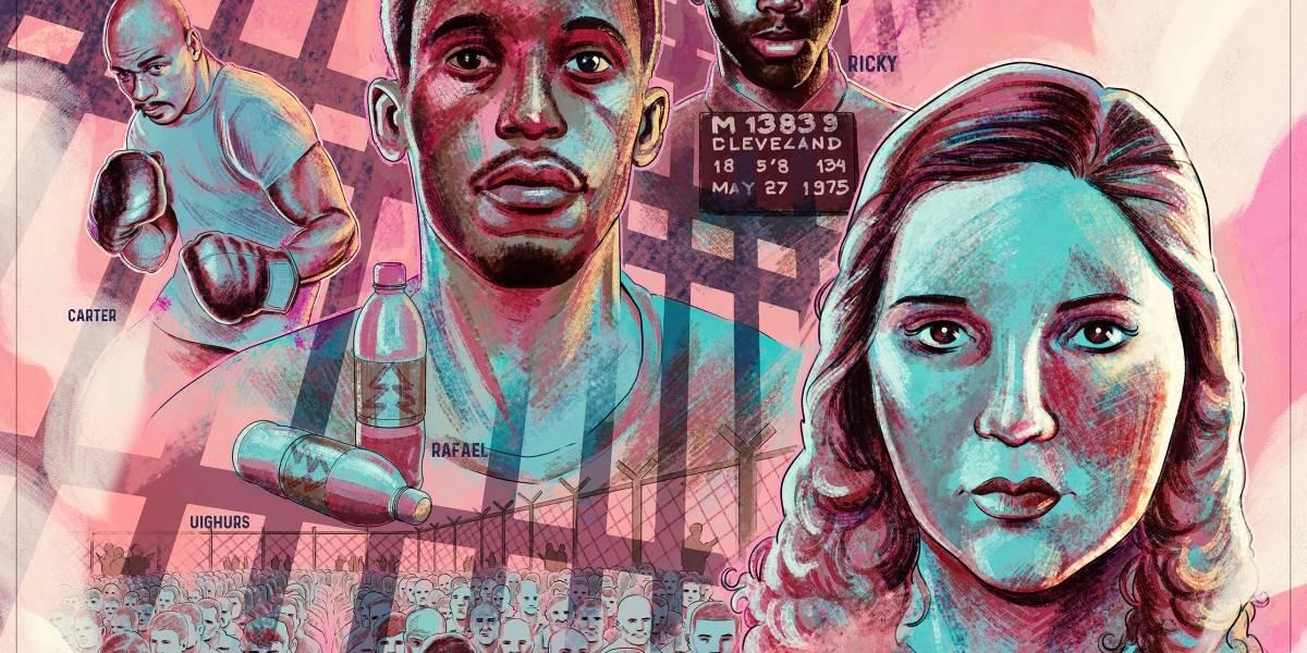 Declaração Universal dos Direitos Humanos vira livro ilustrado por artistas brasileiros