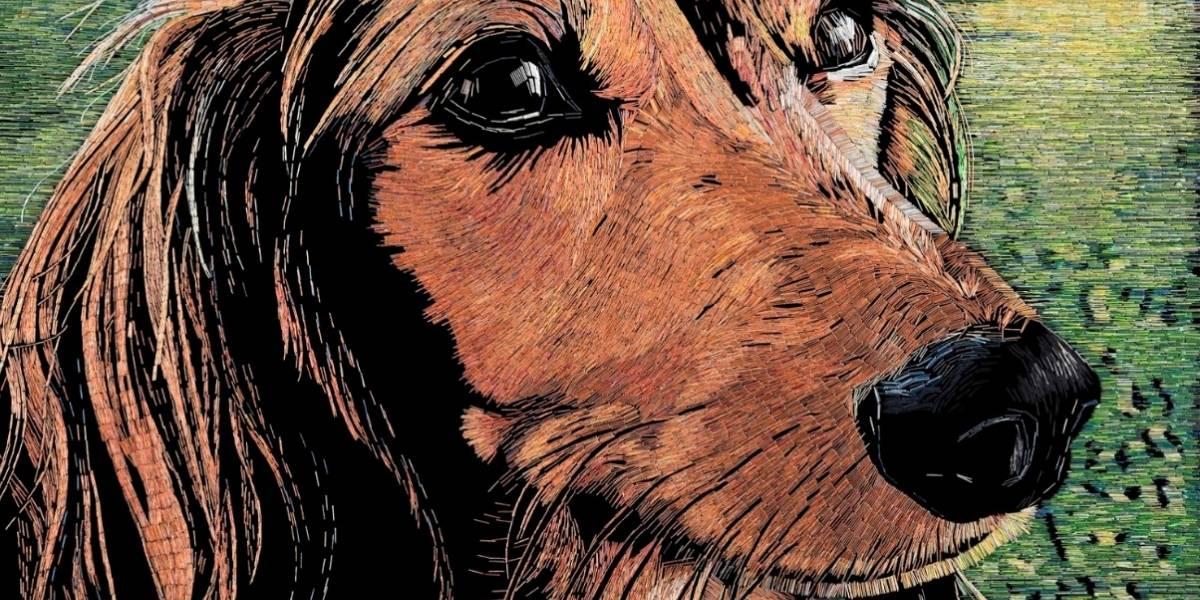 Artista recrea a su perro con grapas