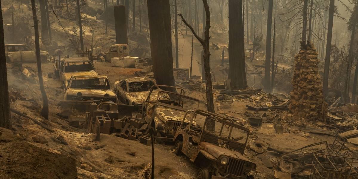 Incêndios florestais deixam sete mortos, incluindo um bebê, no oeste dos EUA
