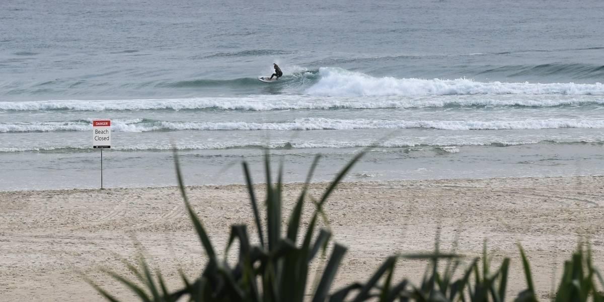 Muere surfista al ser atacado por un tiburón blanco