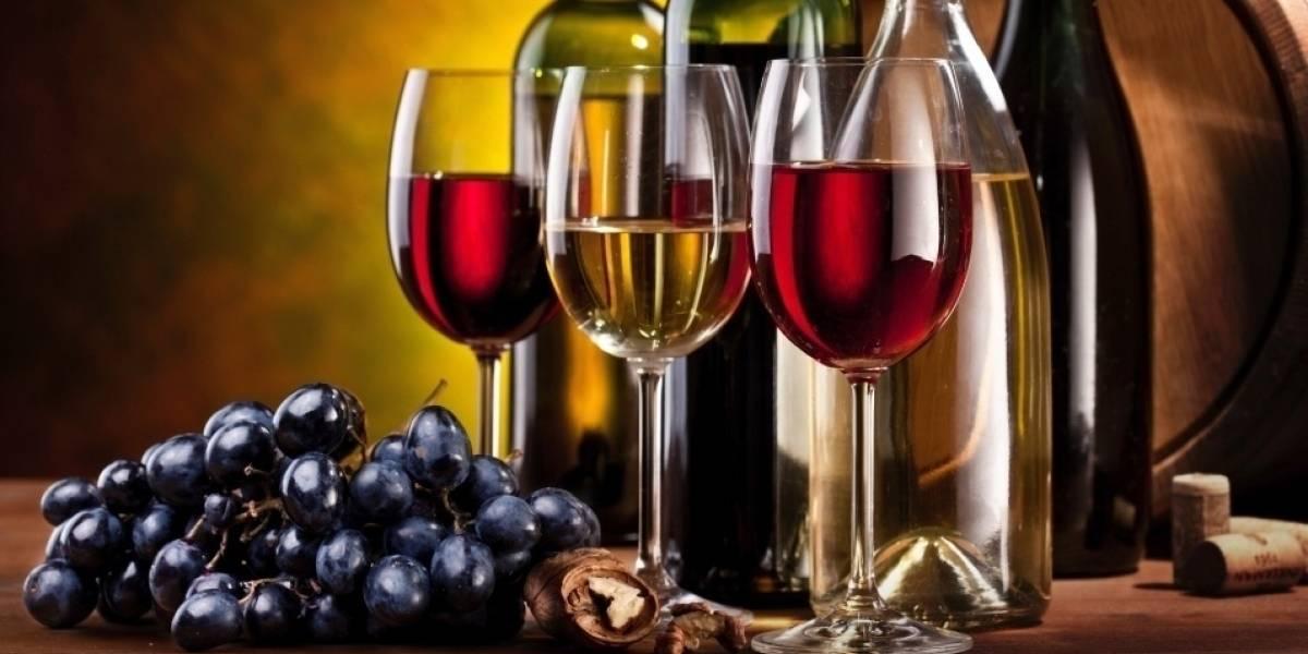 5 vinhos elogiados no e-commerce brasileiro, que é 3º maior mercado online da bebida no mundo