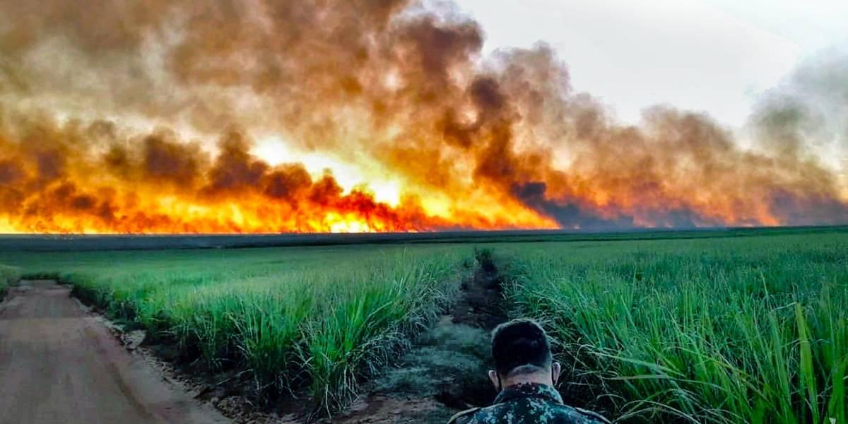 Pantanal: Mato Grosso do Sul declara situação de emergência por incêndios