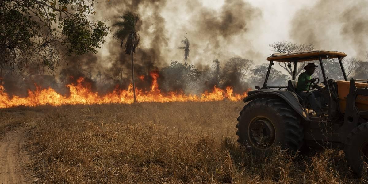 Incêndio no Pantanal tomou 'proporção gigantesca', admite Salles