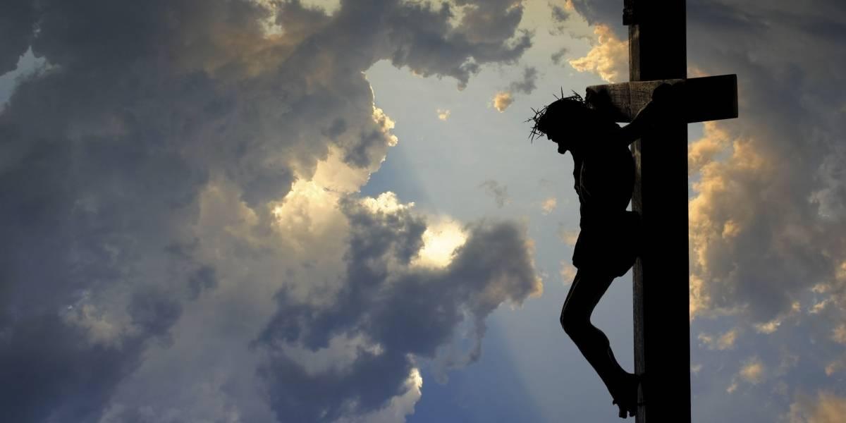 Fotógrafo do Acre captura 'registro' de Jesus Cristo em árvore; entenda o que aconteceu