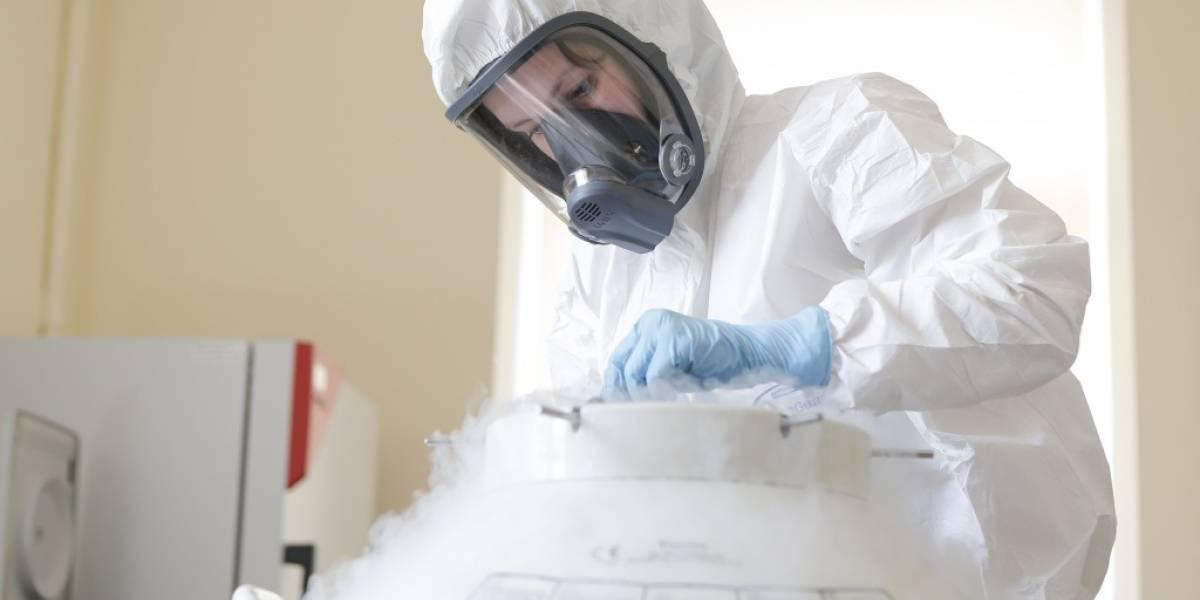 Coronavirus.- Recomiendan a las voluntarias que prueban la vacuna rusa que no se queden embarazadas durante los ensayos