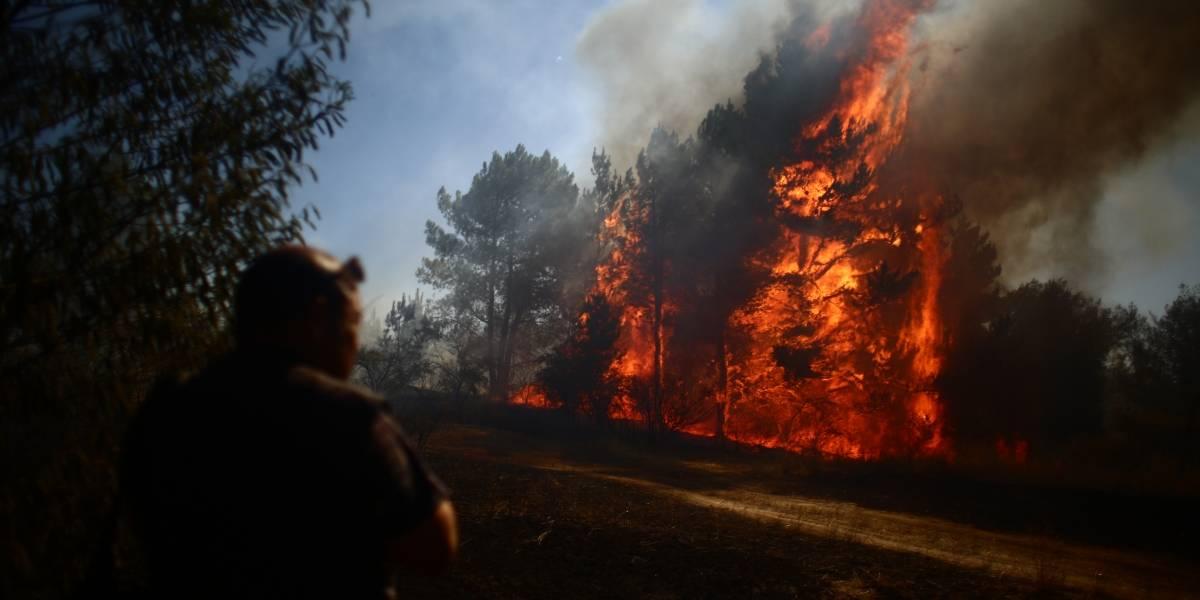 """Incendios forestales: prevén """"tormentas de fuego"""" desde Valparaíso al sur"""