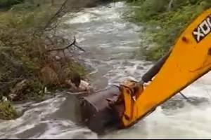 https://www.metrojornal.com.br/social/2020/09/18/video-homem-arrisca-propria-vida-para-salvar-cao-em-rio-com-forte-correnteza.html
