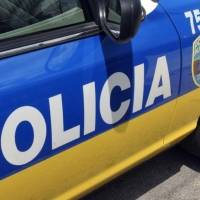 Muere conductor que chocó contra un toro en Morovis