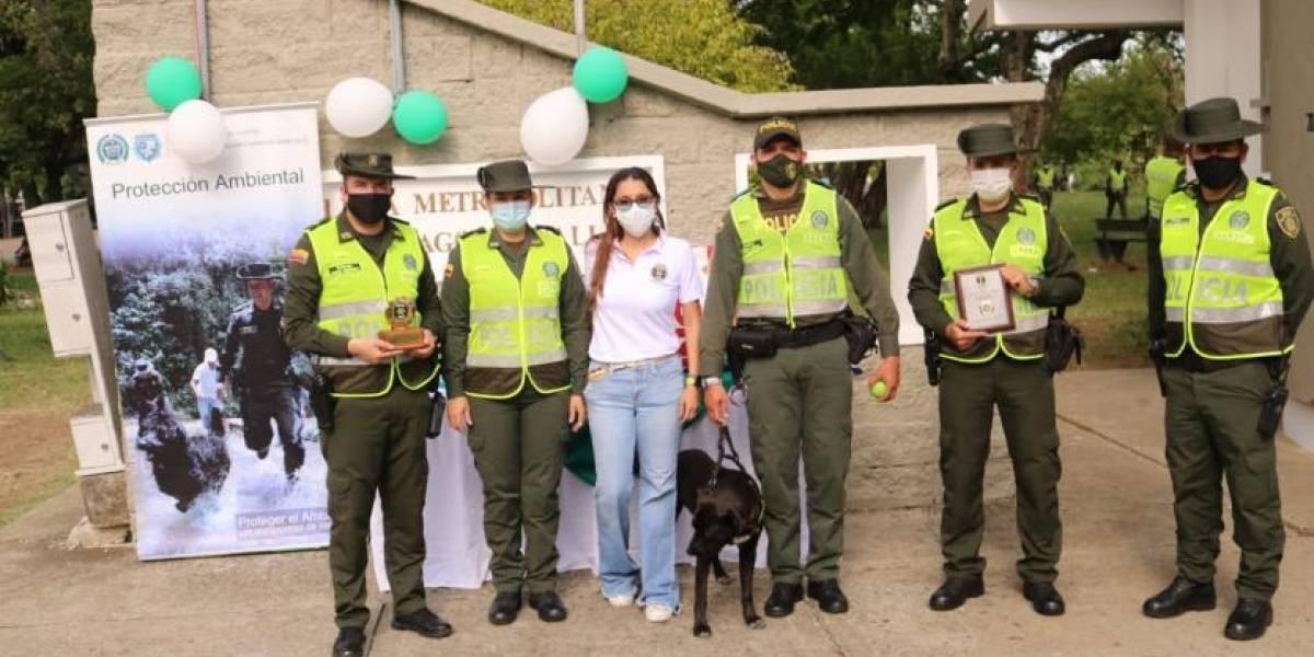 Perrito que se perdió en las protestas volvió a su trabajo como guardián