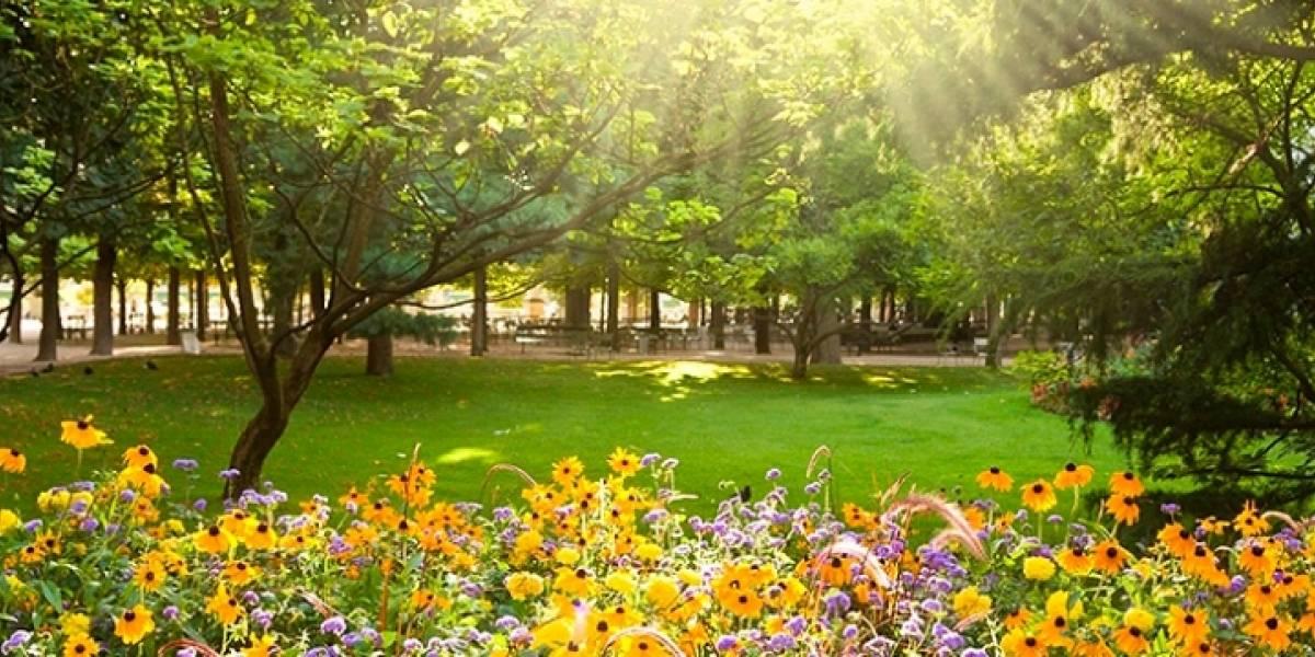 Ciencia: ¿cuándo realmente será el equinoccio de primavera?