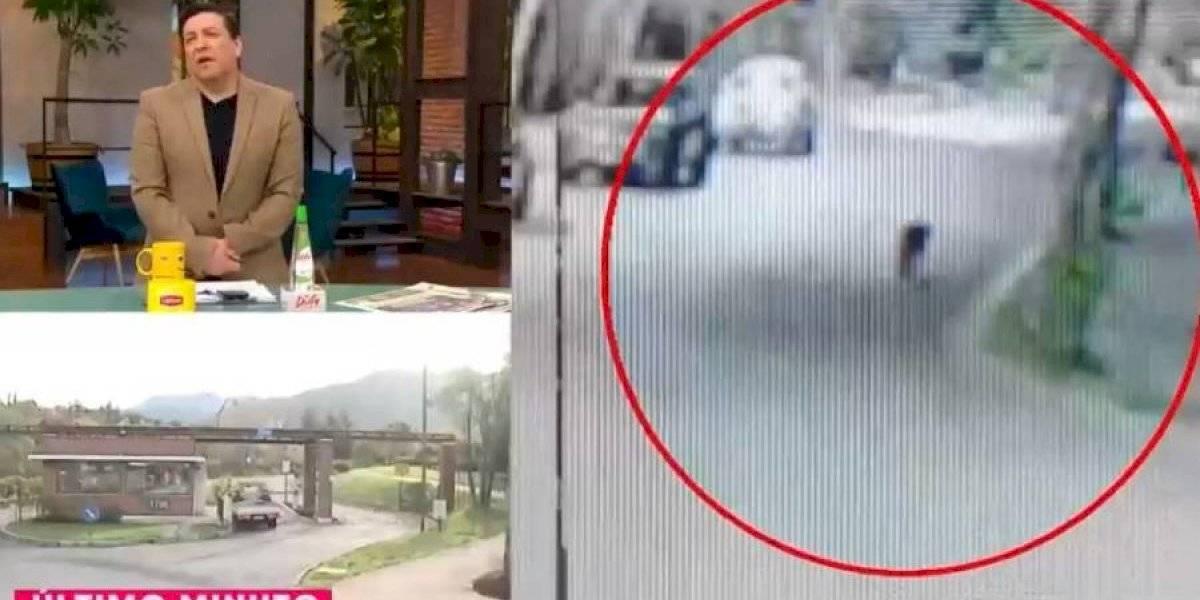El bullying de Julio César Rodríguez a Pablo Aguilera por avistamiento de pumas