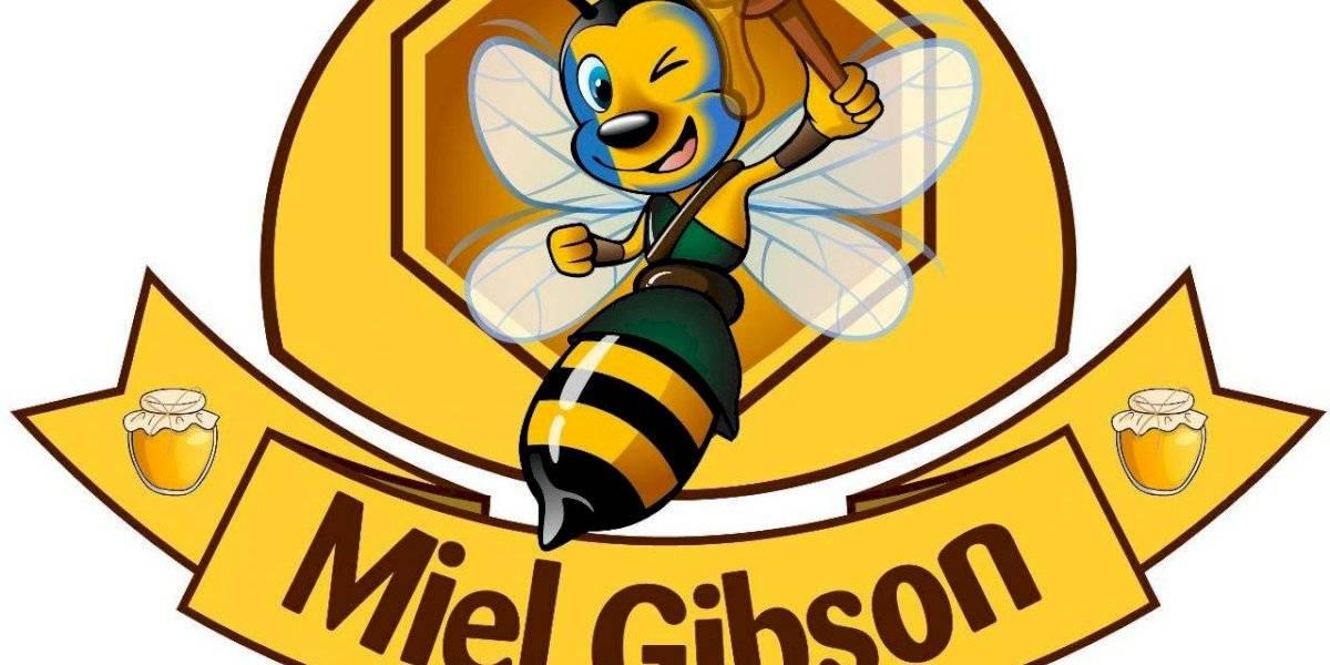 Miel Gibson logró fama por el dulzor de las abejas y el lío con Mel