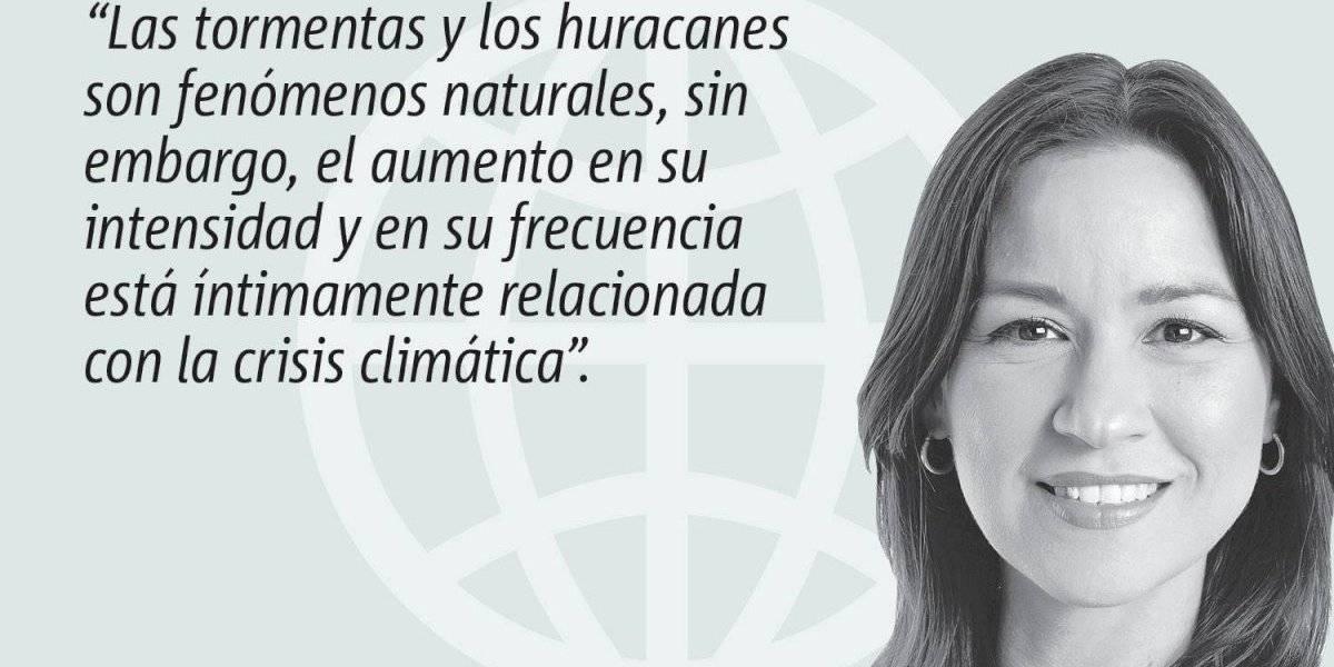 Opinión de Rosa Seguí Cordero: Medidas urgentes para enfrentar la crisis climática