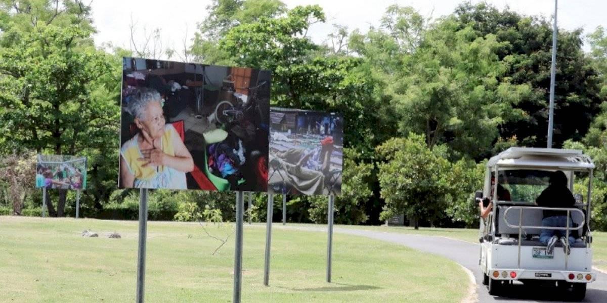 """Extienden exposición """"3,000 NUNCA MS/NEVER AGAIN"""" en el parque Luis Muñoz Marín"""