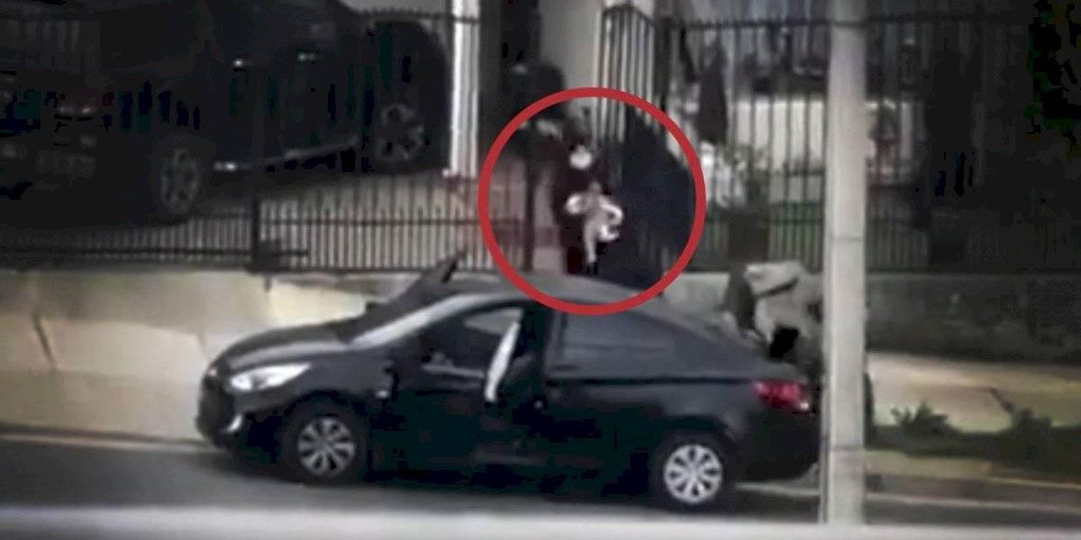 ¿A dónde vamos a parar? Delincuentes se llevan seis perros en millonario robo en Quilpué