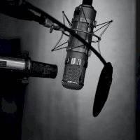 ¿Quieres empezar un podcast? 3 Micrófonos de alta calidad con un precio menor a 100 dólares. Noticias en tiempo real