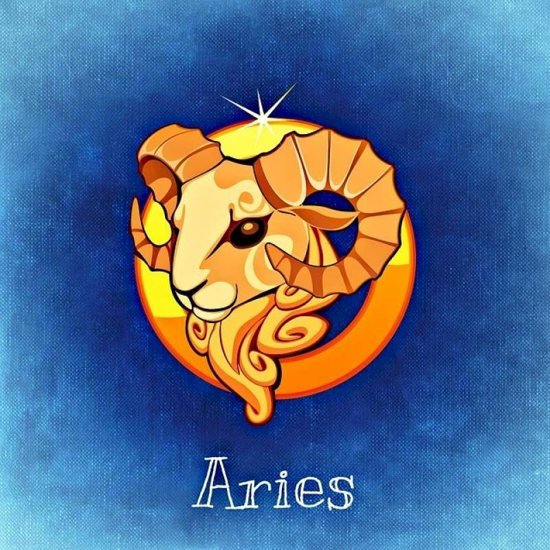 aries75938264055-7993e1552be057ad91786de9bed0bfaf.jpg