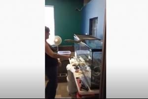 Vídeo mostra píton atacando cuidadora e se enrolando completamente em seu braço